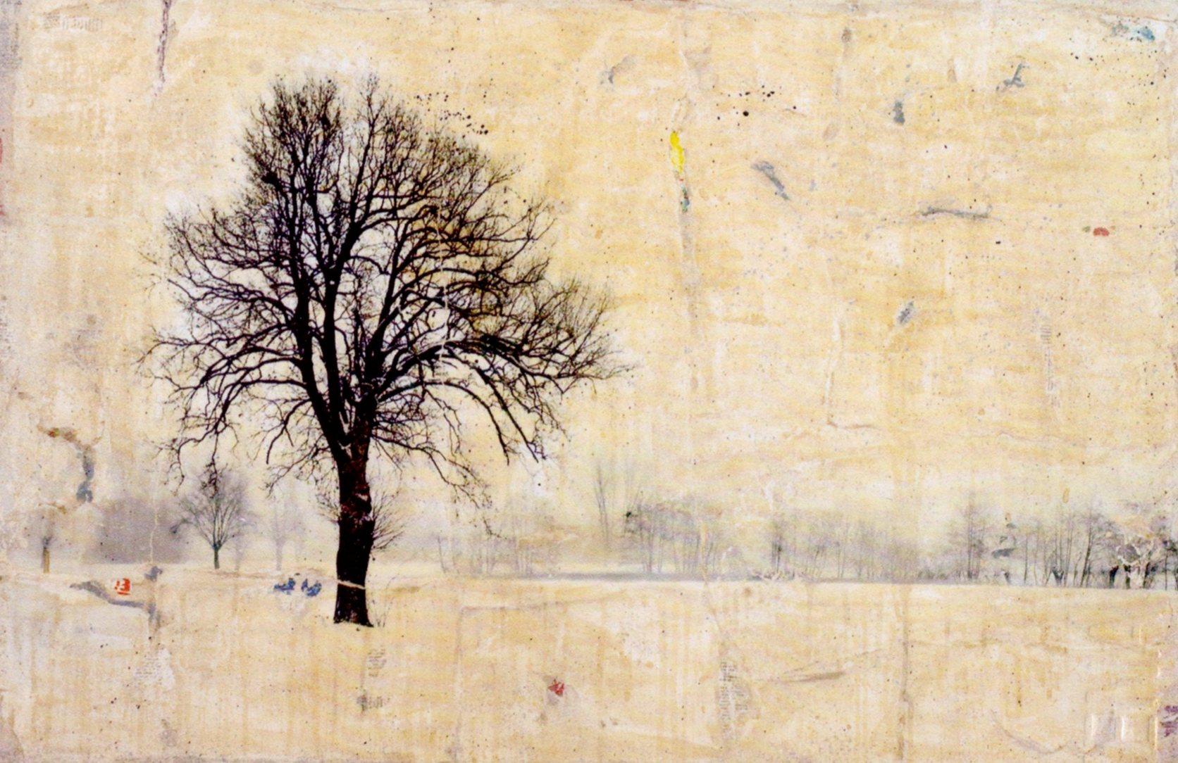 hyena, albero, 80x120, 2010 arch. 1008 per mail